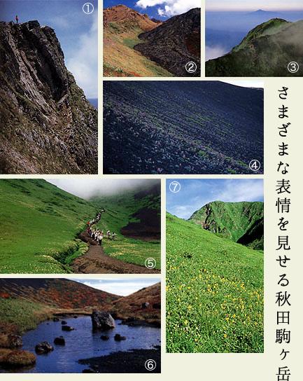 駒ケ岳写真